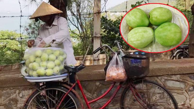 Hội mê phượt cảnh báo nguy hiểm từ loại 'ổi táo' giá 50kg/kg bán dọc đường với lời mời chào: Ngon, giòn, ngọt