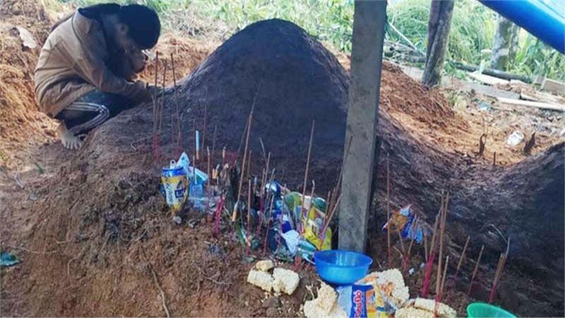 Về làng tìm cha mẹ, cô học trò Trà Leng (Quảng Nam) gục khóc bên 2 nấm mồ khiến nhiều người xót xa