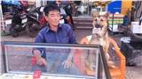 Chú chó ngồi bán vé số khiến dân mạng thích thú nhưng cách chú ta phản ứng khi có khách chạm vào tập vé ngậm trong miệng gây bất ngờ