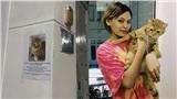 Hành trình 24 giờ tìm kiếm mèo cưng đi lạc của cô gái Sài Gòn: Cảm ơn những người hàng xóm tốt bụng