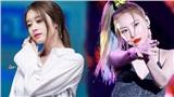 Ồn ào câu chuyện trùng màu lightstick: Fan T-ara đăng đàn cực gắt ngay trên trang của Sunmi