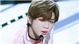 Vừa toàn thắng LM Ent, niềm vui lại gấp bội khi 'center quốc dân' Kang Daniel chính thức công bố ngày debut solo