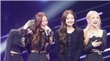 Black Pink sẽ comeback: Knet 'cà khịa' nhiệt tình, tiết lộ nhóm hầu như không có fan ở Hàn