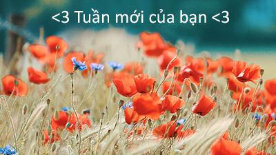 Dự báo tuần mới (27/08 - 02/09): Nhân Mã tận hưởng lãng mạn; Song Ngư nên thay đổi cách yêu
