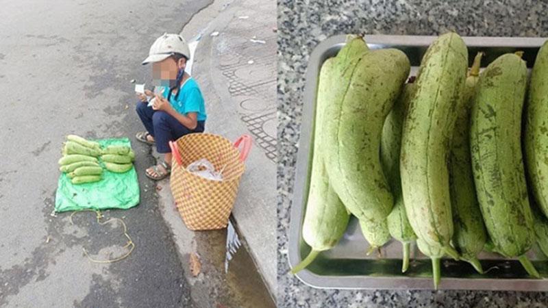 Cậu bé bán mướp bên đường và hành động đặc biệt của người phụ nữ lạ khiến ai cũng thấy ấm lòng