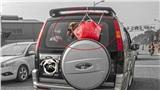 Hình ảnh chú chó bị chủ bỏ trong chiếc giỏ đi chợ rồi treo lủng lẳng sau xe ô tô khi đang chạy trên đường khiến dân mạng tranh cãi kịch liệt