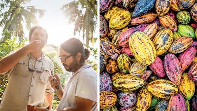 Câu chuyện về loại socola Việt 'ngon nhất thế giới'