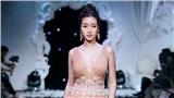 Giữa ồn ào lộ ảnh người yêu, Hoa hậu Đỗ Mỹ Linh vẫn bình thản catwalk trên sàn diễn thời trang