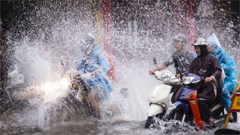 Tin bão số 10 khẩn cấp, nhiều tỉnh mưa lớn