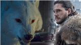 Fan Game of Thrones vỗ tay kịch liệt trước sự trở lại của Bóng Ma trong tập 2 'Trò chơi vương quyền' mùa 8