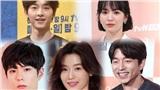 Kết quả bình chọn 10 diễn viên Hàn Quốc được yêu mến nhất 2019: Đứng nhất không ngờ tới!