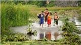 'Trạng Tí' của Ngô Thanh Vân hé lộ những hình ảnh đầu tiên về bộ tứ 'Tí - Sửu - Dần - Mẹo'