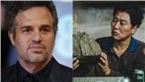 'The Hulk' Mark Ruffalo sẽ đóng series 'Ký sinh trùng' bản tiếng Anh của HBO?