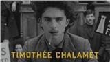 Đứng ngồi không yên khi ngôi sao 'Call me by your name' Timothée Chalamet trở lại trong phim của 'phù thủy kể chuyện' Wes Anderson