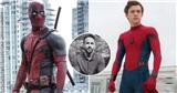 Marvel trả lời sao khi Ryan Reynolds đòi Deadpool xuất hiện trong Spider Man 3?
