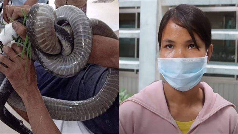 Tình trạng người cha 2 con bị rắn hổ chúa 4,5kg cắn chuyển biến nặng: Vết thương hoại tử, tổn thương thận cấp phải lọc máu liên tục