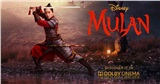 Đạo diễn của 'Mulan' tung teaser thử tạo hình của Lưu Diệc Phi sau nhiều lần dời lịch chiếu phim