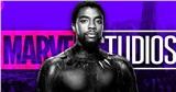 Chính Marvel cũng bất ngờ về sự ra đi của Chadwick Boseman