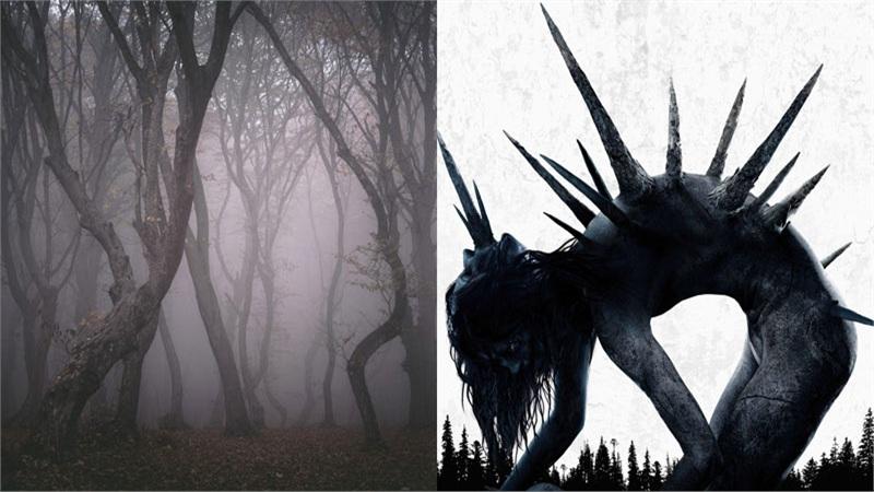 Lý do gì khiến bạn không thể bỏ lỡ tác phẩm kinh dị mở màn tháng Halloween 'Dạ Quỷ Rừng Sâu'?