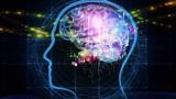 5 mẹo giúp tăng cường trí thông minh đã được khoa học chứng minh