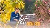 Hoa đào, mai, quất đua sắc khắp phố phường Hà Nội, 'Tết tết tết tết đến rồi!'