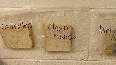 Nhìn lát bánh mì mốc này, bạn sẽ biết rửa tay quan trọng như thế nào qua thí nghiệm của cô giáo cấp 3