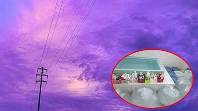 Bầu trời Nhật Bản chuyển sang màu tím, người dân tích trữ lương thực và nước uống trước bão