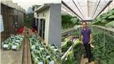 Người đàn ông ở Lai Châu gửi 2 tấn rau sạch ủng hộ người dân khu cách ly ở Hà Nội