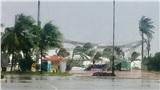 Người dân xót xa khi thấy sân khấu Đà Nẵng bị bão số 9 thổi đổ rạp