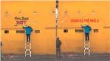 Bức tường vàng Cối Xay Gió nổi tiếng Đà Lạt liên tục bị chế ảnh ghép, dân mạng bức xúc: 'Không phải trò đùa'