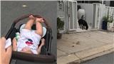 Mẹ trẻ ra đường quên đóng cổng để chó lạ vào nhà, run rẩy không biết làm gì liền đăng lên mạng khiến dân tình bùng nổ tranh cãi