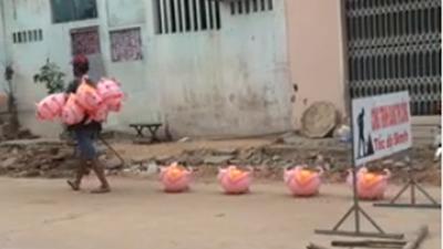 Dắt đàn lợn nhựa dạo phố, người đàn ông nhận được 10.000 like chỉ trong 1 giờ đăng tải