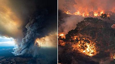 Vụ cháy rừng ở Australia ảnh hưởng tồi tệ thế nào đến môi trường sinh thái toàn cầu?