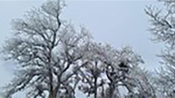 Không khí lạnh tiếp tục tăng cường, Bắc Bộ chìm trong giá rét