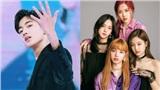 Tân binh sắp ra mắt nhà YG giơ 'ngón tay thối', tỏ ý khinh miệt Black Pink?