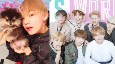 Nghi vấn đang gây xôn xao: V (BTS) đưa chó cưng góp giọng trong bài hát mới?