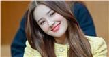 Nancy (MOMOLAND) bị chỉ trích vì tiếp xúc với người nhiễm Covid-19 phải hủy show hàng loạt, netizen tung bằng chứng chủ quan