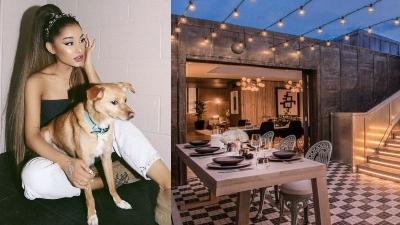 Đời sống sang chảnh của cún cưng nhà Ariana Grande: Đi phi cơ riêng, ở khách sạn giá nghìn đô mỗi đêm