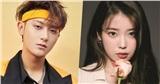 Nửa đêm Hoàng Tử Thao livestream tỏ tình 'rất yêu một nữ ca sĩ Hàn Quốc': Cư dân mạng gọi tên IU