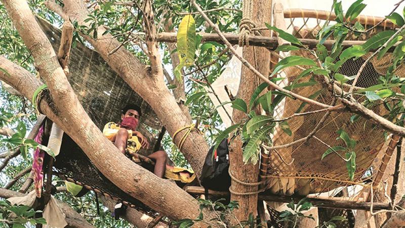 Tránh lây lan virus cho cả làng khi đi làm xa trở về, nhóm người Ấn Độ tự cách ly... trên cây