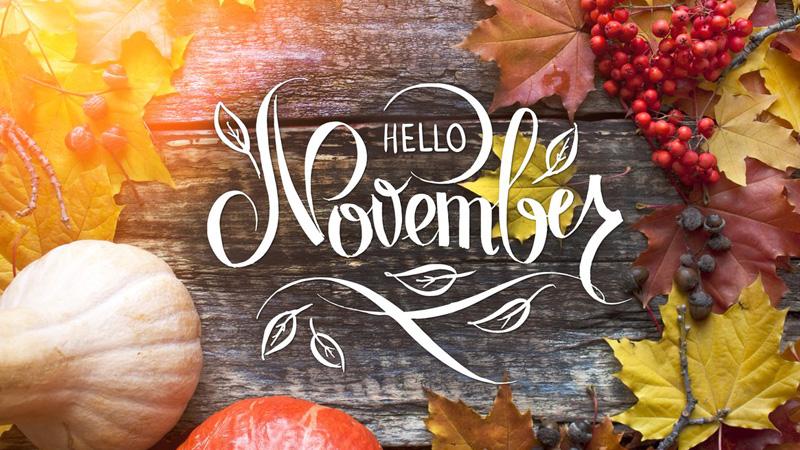 Chào tháng 11, bạn đã sẵn sàng cho những chuyến phiêu lưu kỳ thú?