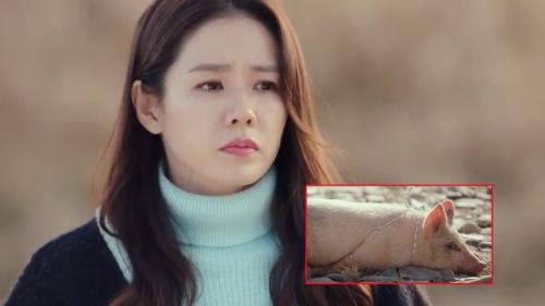 'Hạ cánh nơi anh' tập 6: Son Ye Jin kiên quyết không ăn thịt vì cô và con lợn đã 'nhìn nhau mấy lần rồi'