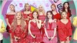 Twice đạt cúp thứ 101 nhưng dân mạng lại tiếp tục mỉa mai: 'Hát thế này mà vẫn giành được hạng nhất à?'