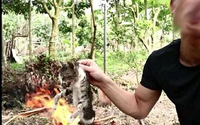 Cộng đồng mạng phẫn nộ khi tài khoản youtube câu view bằng cách hành hạ, ăn thịt động vật