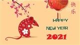 Tử vi đầy đủ cho người tuổi Tý trong năm Tân Sửu 2021