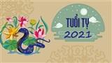 Tử vi đầy đủ cho người tuổi Tỵ trong năm Tân Sửu 2021
