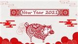 Tử vi đầy đủ cho người tuổi Hợi trong năm Tân Sửu 2021