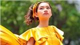 Nữ du học sinh Việt gây sốt khi sở hữu kênh youtube khủng, biểu cảm tự tin khiến ai cũng yêu