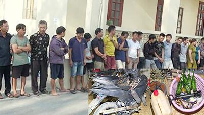 Vụ trộm hàng trăm tấn chó: 'Cẩu tặc' đã mang theo cả kích điện, ớt bột, mảnh chai đập vỡ