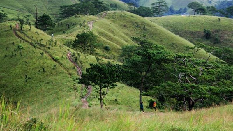 Ngã ba đi lạc rừng Tà Năng - Phan Dũng: Điểm 'nóng' phải nhớ đối với dân trekking
